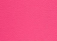 Paint-pot-pink